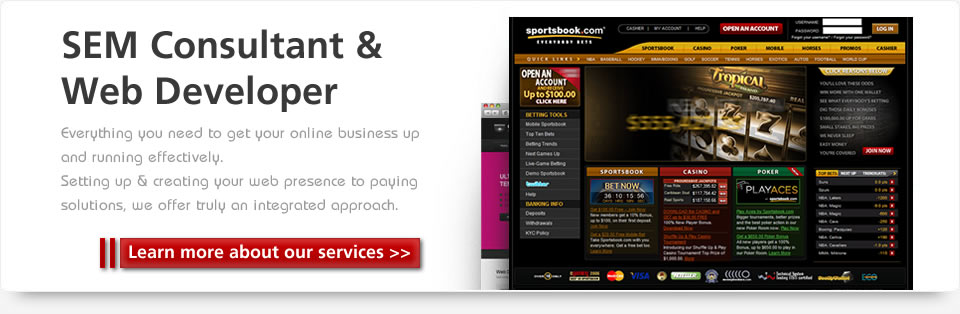 SEO Consultant < Webdeveloper